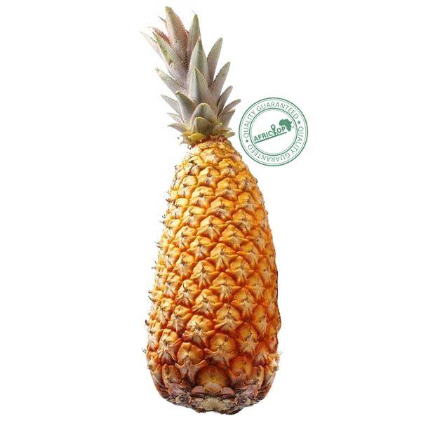 ananas-pan-de-sucre