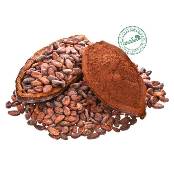 cacao-africa
